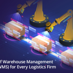 Types of warehouse management systems for logistics firm