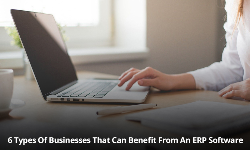Types of Businesses getting benefited from ERP Software